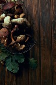 top view of fresh picked edible mushrooms in basket and green oak leaves on wooden table