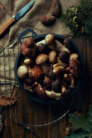 top view of assorted raw mushrooms in pan, knife and sackcloth on wooden table