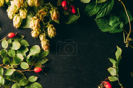 flat lay with autumn plants arrangement on black background