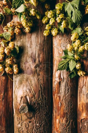 top view of hops with green leaves on wooden backdrop