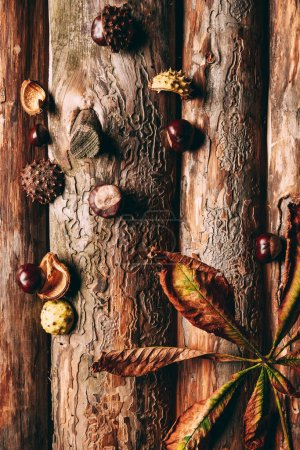 top view of chestnuts and dry leaves on wooden background