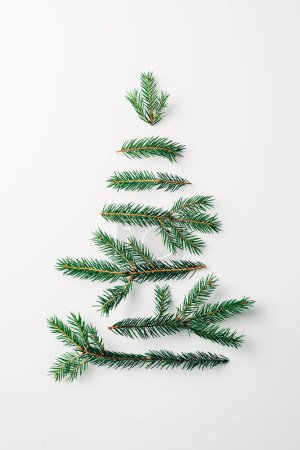 top view of pine tree branches arranged in tree shape isolated on white