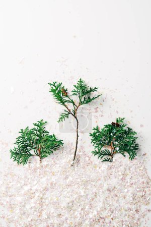top view of green pine tree branches and confetti on white backdrop