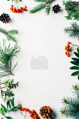 Photo for Flat lay with winter arrangement of pine tree branches, cones and sea buckthorn on white backdrop - Royalty Free Image