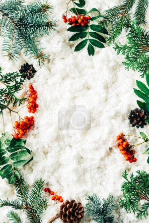 flat lay with winter arrangement of pine tree branches, cones and sea buckthorn on white cotton wool backdrop