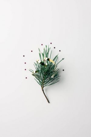 top view of little pine tree branch with ribbon and glitters on white surface