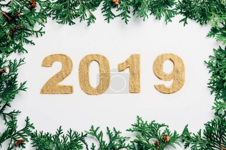 top view of 2019 year sign made of golden glitters and pine branches on white backdrop