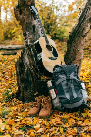 camping supplies on autumnal background with foliage