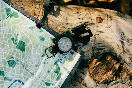top view of compass on aged rustic tree bark with travel map