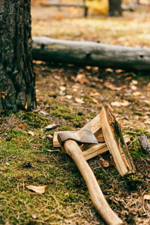 pile of chopped firewood on ground with ax in autumn forest