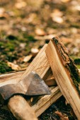 close up of pile of chopped firewood on ground with ax in autumn forest