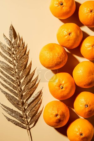 Top view of tangerines and decorative golden twig on beige backdrop