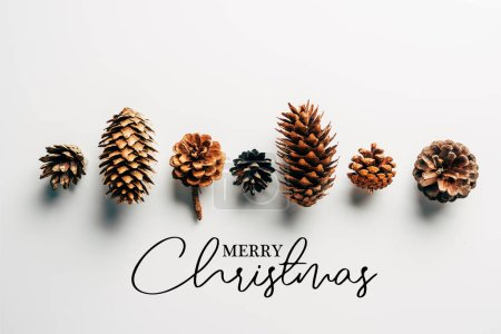 "top view of pine cones arranged on white backdrop with ""merry christmas"" lettering"