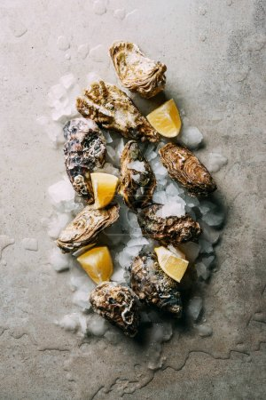 top view of arrangement of oysters with ice and lemon pieces on grey surface