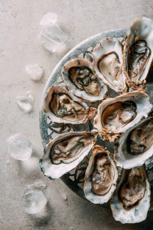 Photo for Top view of oysters and ice in bowl on grey tabletop - Royalty Free Image