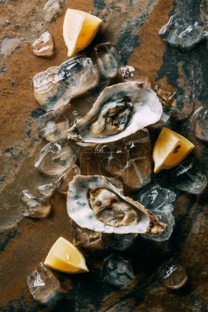 food composition of oysters, lemon pieces and ice on grungy tabletop