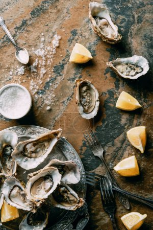 top view of arrangement of salt, oysters and lemon pieces on grungy tabletop