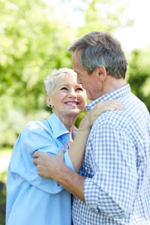 Photo for Waist up portrait of happy senior couple looking at each other while embracing in Summer park - Royalty Free Image