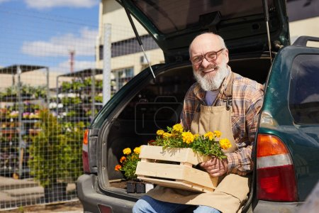 Photo for Portrait of bearded senior gardener holding box of flowers and sitting in car trunk by outdoor plantation, copy space - Royalty Free Image