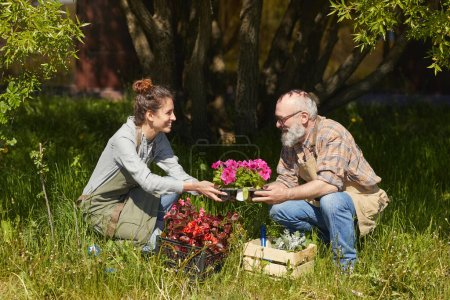 Photo for Side view portrait of father and daughter planting flowers under big tree in sunlit garden, copy space - Royalty Free Image