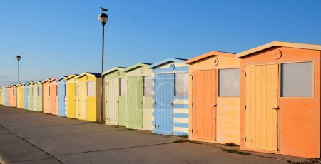 A row of twenty brightly coloured beach huts the nearest one is the largest the row has a diminishing perspective they are coloured orange, green yellow blue behind them is blue, there are two street lamps in the row the nearest one has a seagull sit