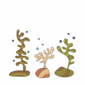 Underwater world plants corals Elements for design decoration of your project