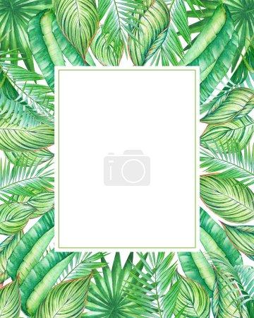 Photo pour Cadre aquarelle avec plantes tropiques et feuilles isolées sur fond blanc. Illustration pour la conception d'invitations de mariage, cartes de vœux avec espace vide pour le texte . - image libre de droit