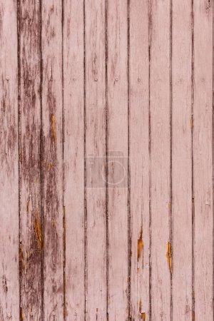 Photo pour Vieux fond de clôture en bois brun rayé avec planches verticales - image libre de droit