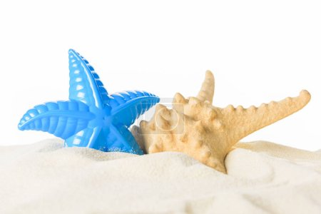 Toy and real starfish in sand isolated on white