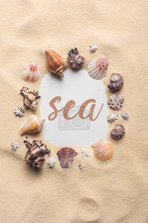 "Frame of various seashells on sandy beach with ""sea"" lettering"