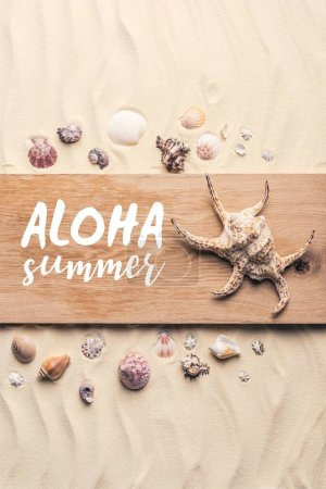 """Large seashell on wooden pier on sandy beach with """"aloha summer"""" lettering"""