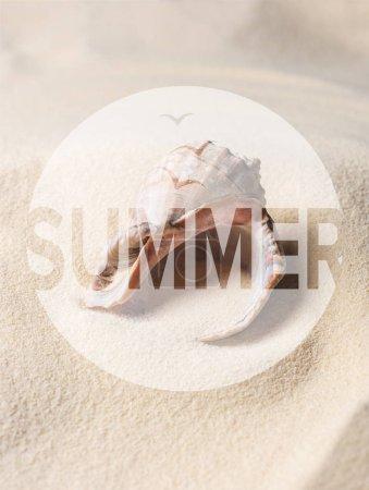 Seashell filled with sand on summer beach, summer inscription