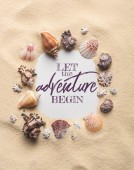 Frame of various seashells on sandy beach, let adventure begin inscription