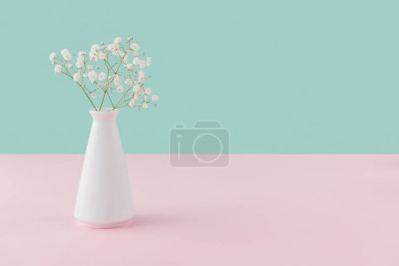 Photo for Vase with white tender flowers on pink and turquoise with copy space - Royalty Free Image