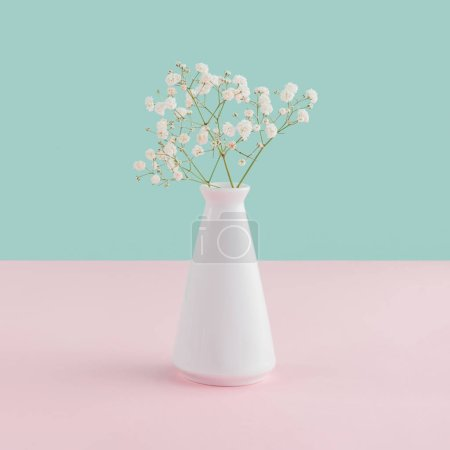 Photo for White vase with tender flowers on pink and blue pastel background - Royalty Free Image