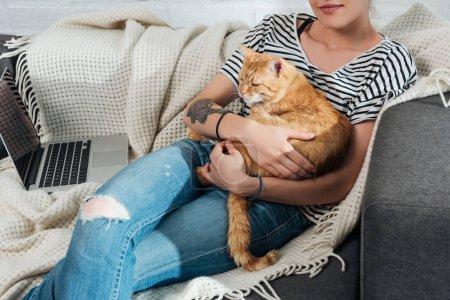 Photo pour Plan recadré de la femme tenant chat gingembre mignon et assis sur le canapé - image libre de droit