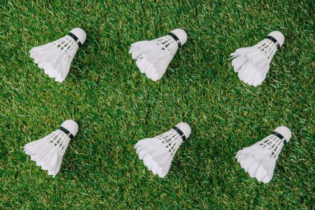 Photo for Top view of white shuttlecocks for playing badminton arranged on green lawn - Royalty Free Image