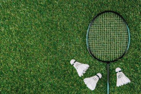 Photo pour Plat avec raquette de badminton et navettes disposées sur herbe verte - image libre de droit