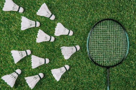 Photo for Flat lay with badminton racket and white shuttlecocks on green lawn - Royalty Free Image