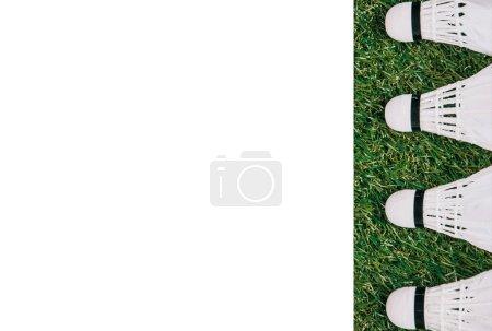 Foto de Vista superior de volantes blancos dispuestos en pasto verde con espacio de copia en blanco - Imagen libre de derechos