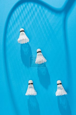 top view of white shuttlecocks and badminton racket shadow on blue backdrop