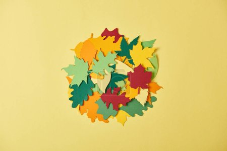 flat lay with colorful papercrafted foliage arranged in cirlce on yellow background