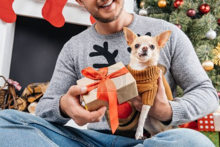 Photo for Cropped shot of man in sweater with deer giving present to little chihuahua dog in decorated room for christmas - Royalty Free Image