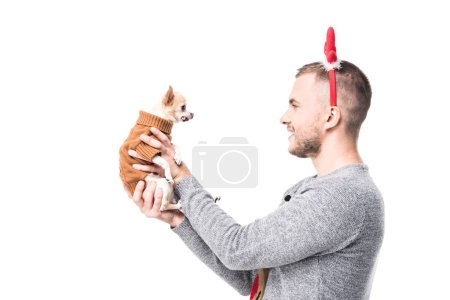 Photo for Side view of man in festive winter sweater and deer horns holding little chihuahua dog isolated on white - Royalty Free Image