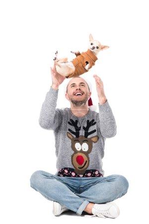 Foto de Sonriente hombre con sombrero de santa claus divertirse con perros chihuahua en suéter aislado en blanco - Imagen libre de derechos