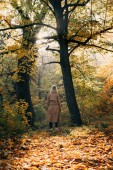 Back view of woman standing in autumn forest and looking at trees