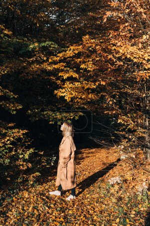 Woman looking at trees in sunny autumn forest