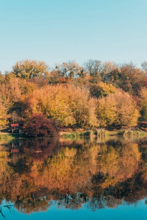Photo for Golden trees in autumnal forest and calm lake - Royalty Free Image