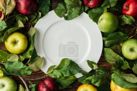 Photo for Top view of white plate, multicolored apples and  branches with leaves on wooden table - Royalty Free Image