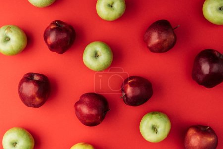 Foto de Vista superior de deliciosas manzanas multicoloras grandes sobre fondo rojo - Imagen libre de derechos